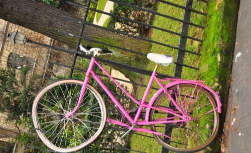 Pink Bike in Paris