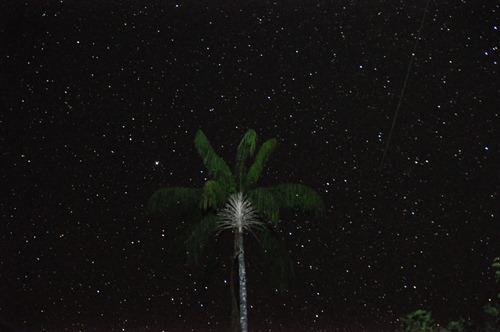 Sky over Explorers' Inn with shooting star