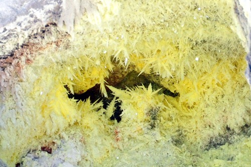 Sulfur crystals by a gas vent