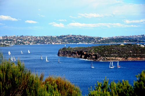 Sailboats near Manly