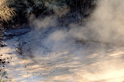 Boiling mud in Rotorua, New Zealand