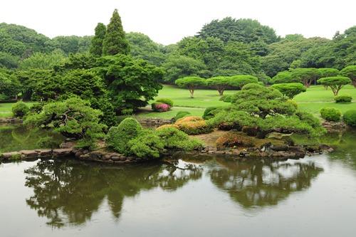Reflections in a lake at Shinjuku-Gyoen Park in Tokyo