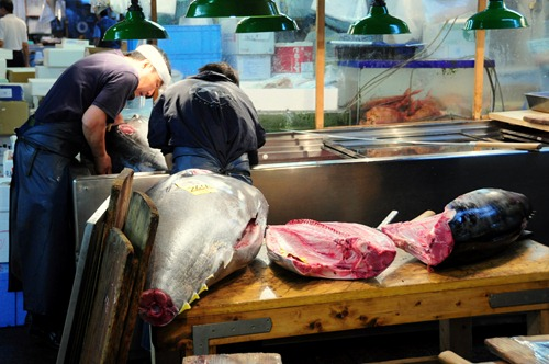 Fish being sliced up at Tsukiji in Tokyo