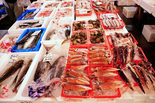 Huge assortment of seafood at Tsukiji