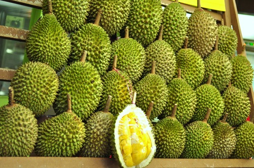 A display of durians in a fruit shop