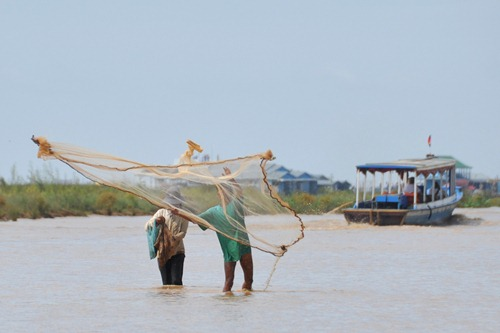 Tonle Sap fisherman