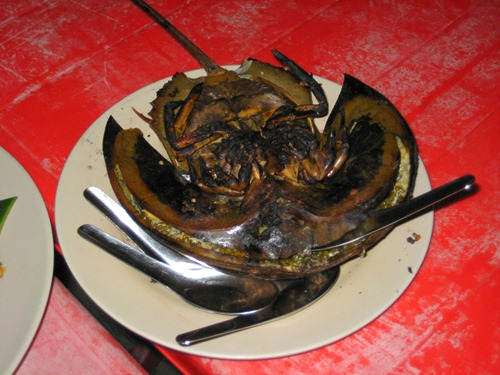 Grilled horseshoe crab - filled with shellfish-egg goodness